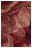 Stitchy Roses Tæppe, 200X300